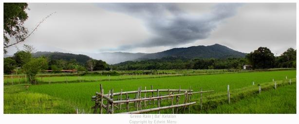 Taga Bawang Puneng Arur (By. Edwin Photography)